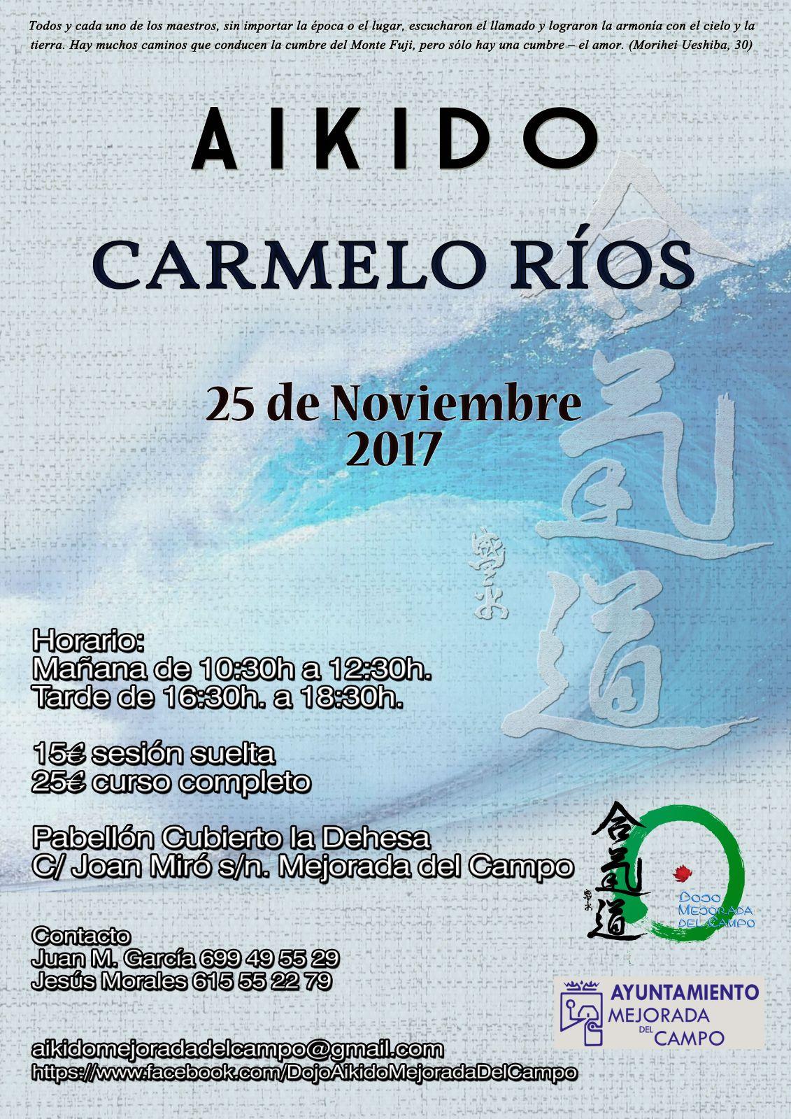 curso de aikido carmelo rios