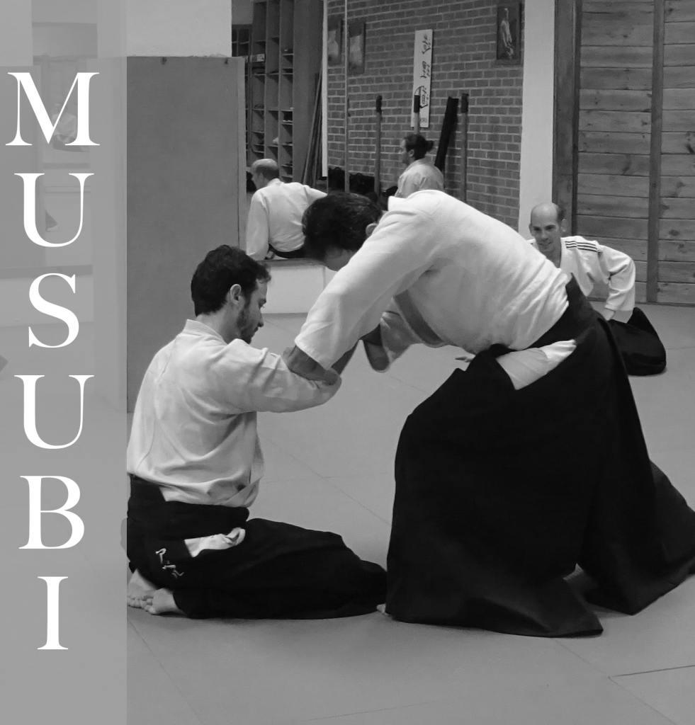 Clases de Aikido villamadrid